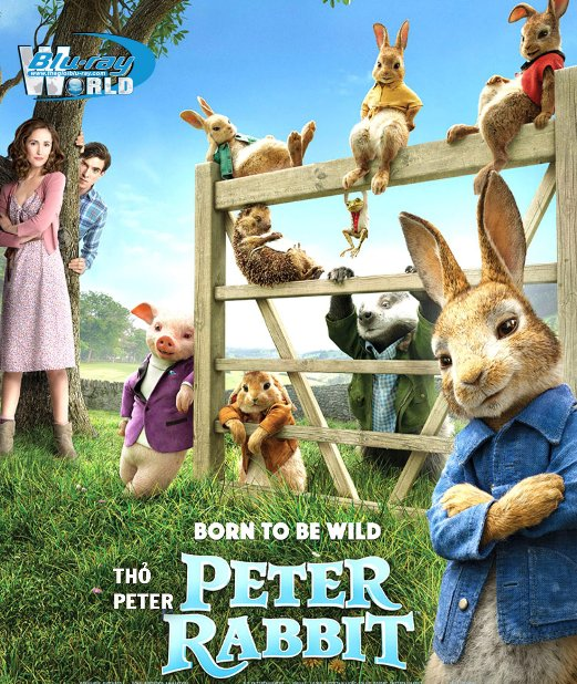 B3477. Peter Rabbit 2018 -  Thỏ Peter 2D25G (DTS-HD MA 5.1)
