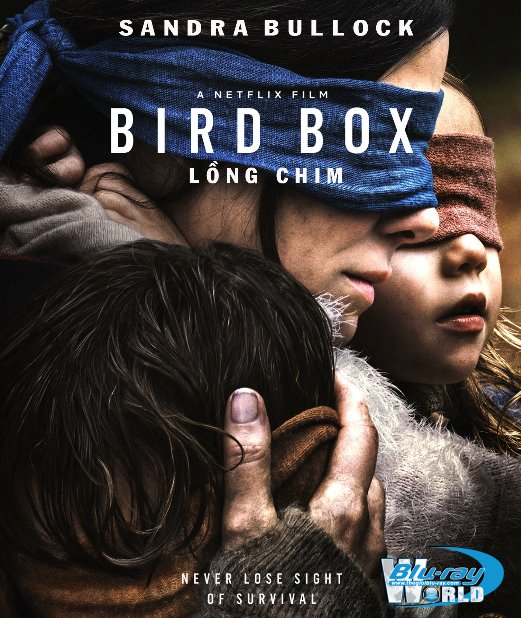 B3819. Bird Box 2018 - Lồng Chim 2D25G (TRUE- HD 5.1 DOLBY ATMOS)