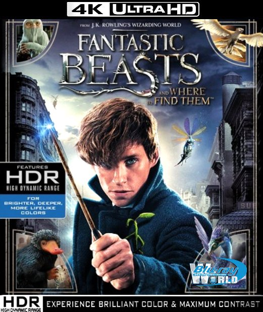 UHD102.Fantastic Beasts and Where to Find Them 2016 UHD 2160P (40G)