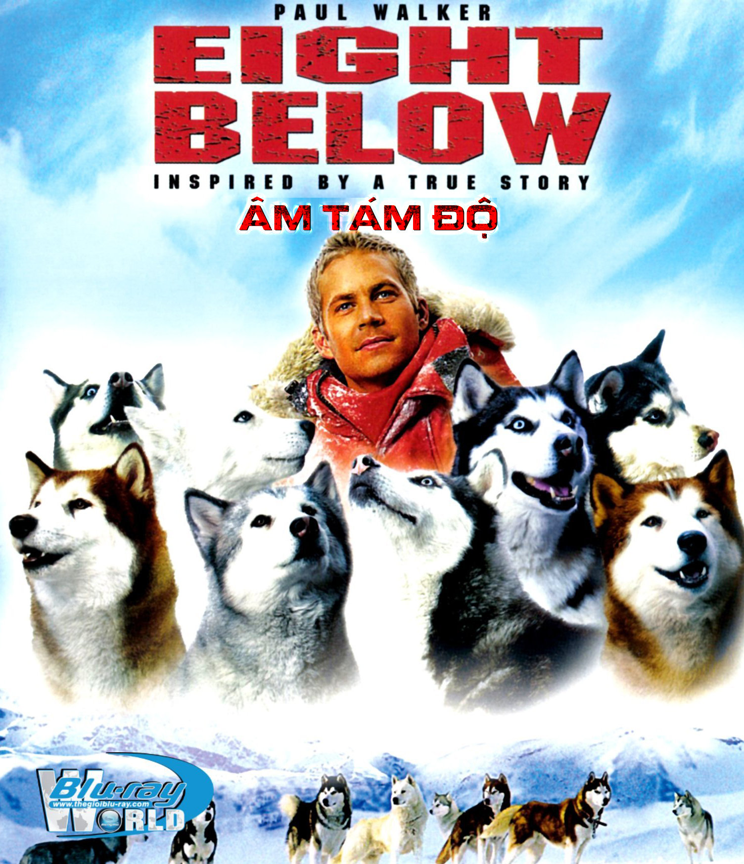 B1543. Eight Below - ÂM TÁM ĐỘ 2D 25G (DTS-HD MA 5.1)