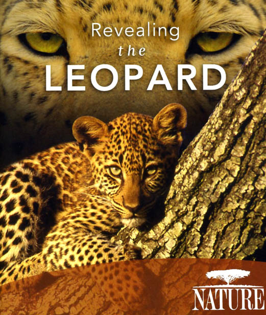 F164. PBS Nature - Revealing the Leopard 2010 3D 25G