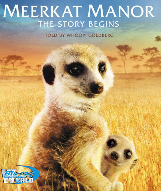 F190 - Meerkat Manor The Story Begins
